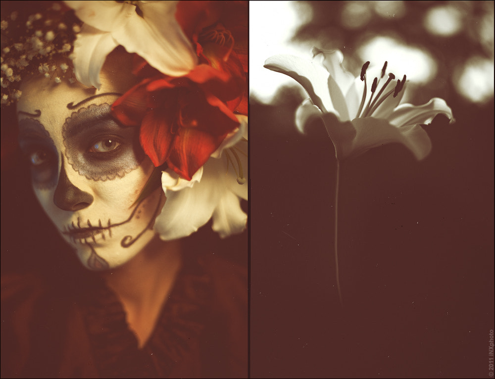 Photograph Dia De Los Muertos by Igor Xrenov on 500px