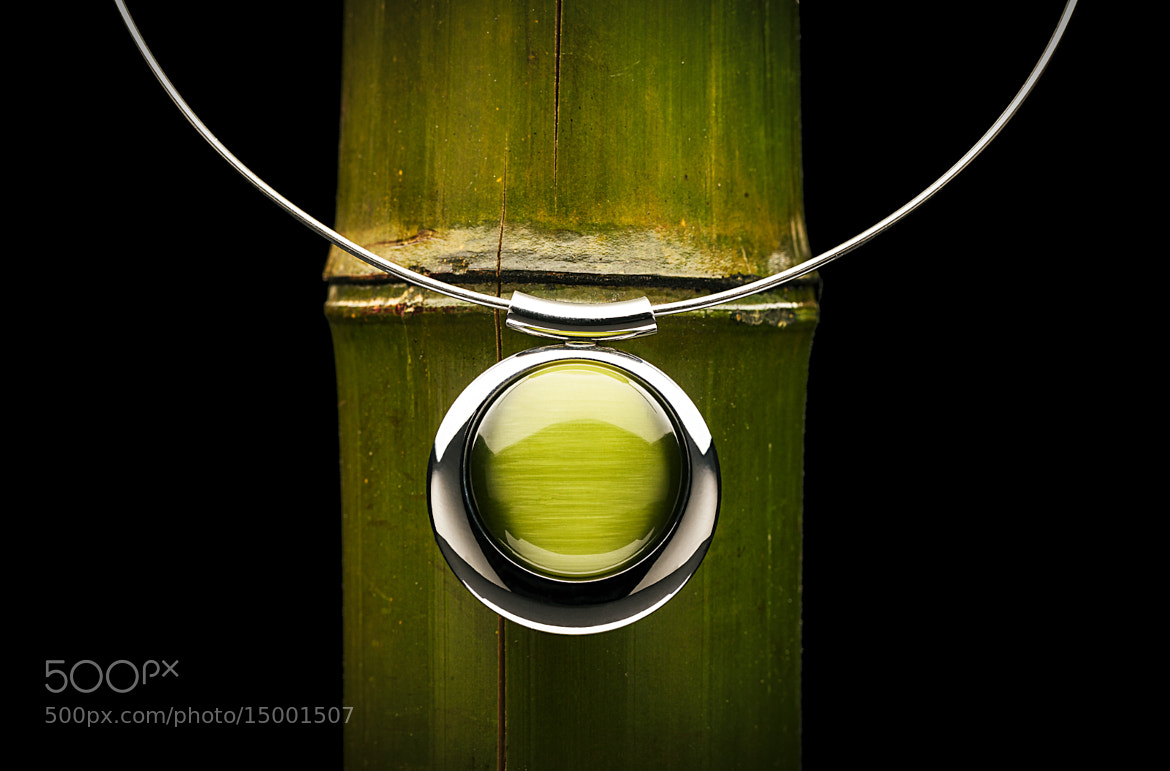 Photograph Jewel & bamboo by Francisco Arroyo on 500px