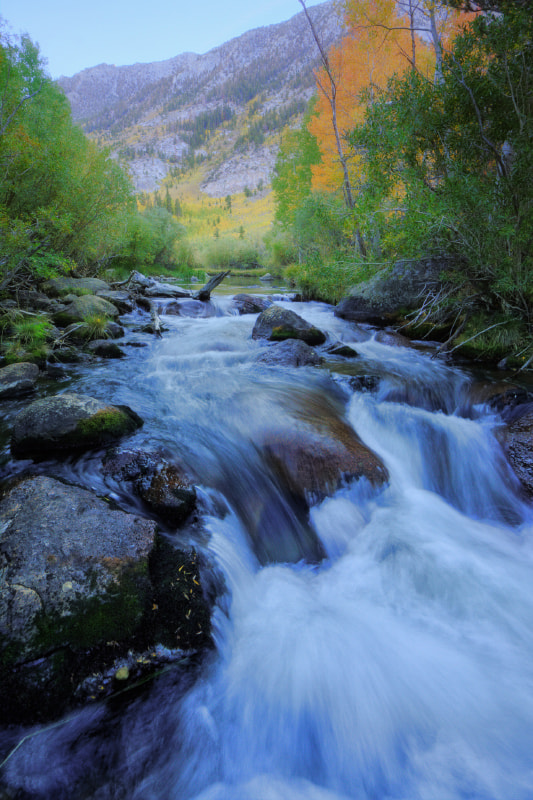 Photograph Early Fall - Bishop Creek by Vincent James on 500px