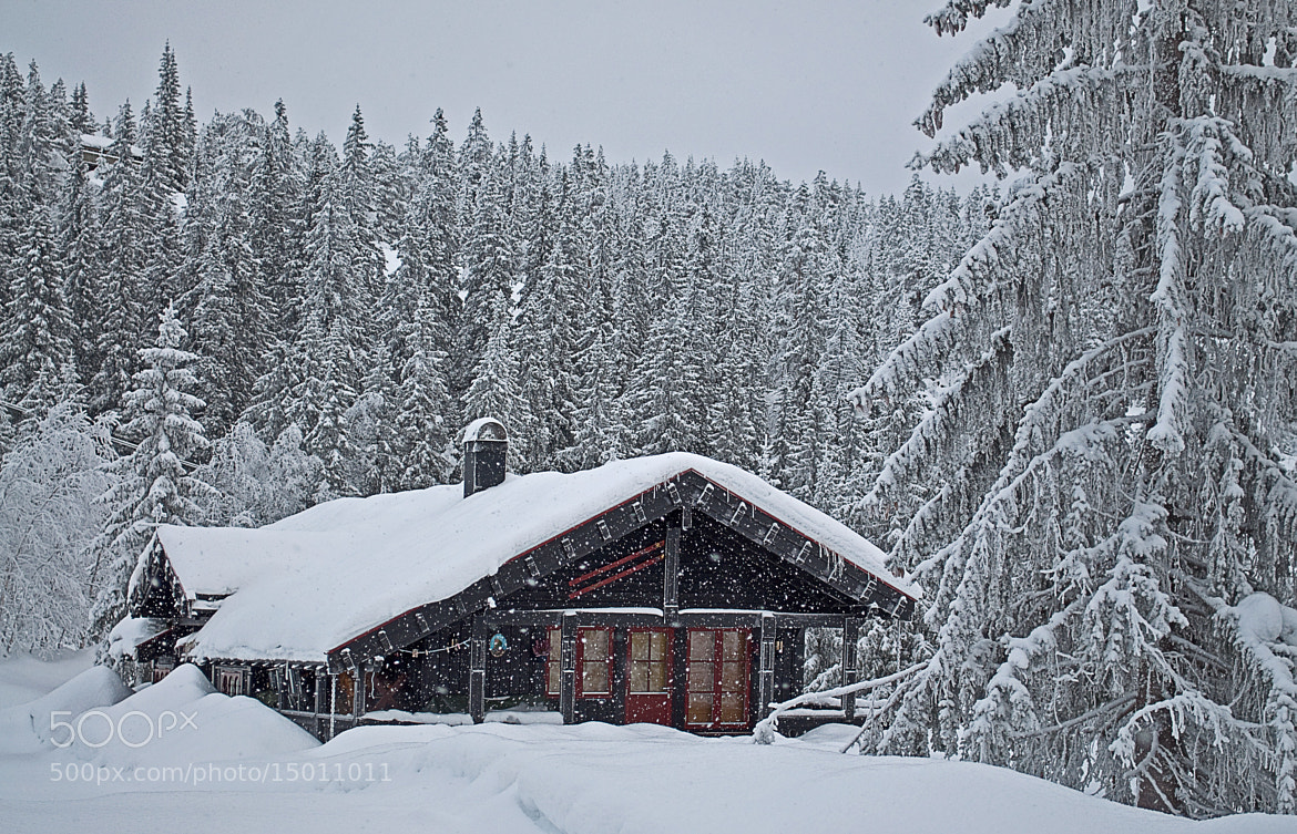 Photograph Cabin in winter wonderland, Blefjell, Norway by Odd Smedsrud on 500px