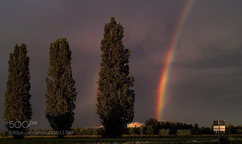 Photograph Rainbow by Luigi Cavasin on 500px
