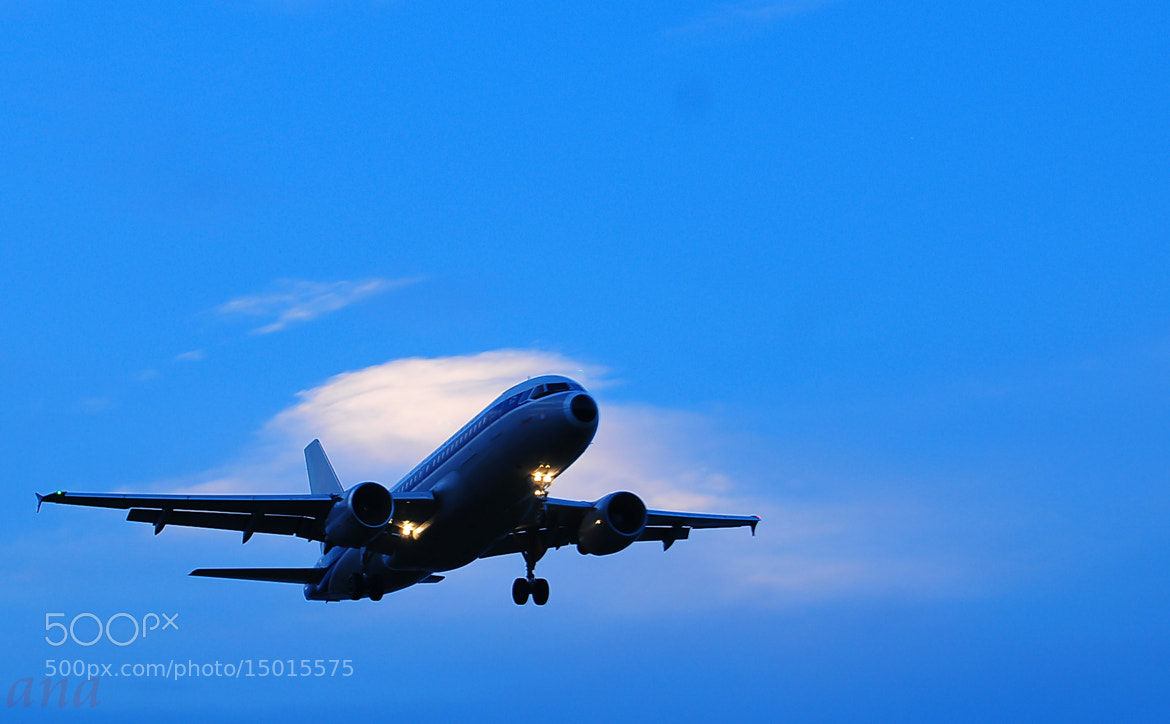 Photograph Fly High in the Sky.. by Aruna Dangol on 500px