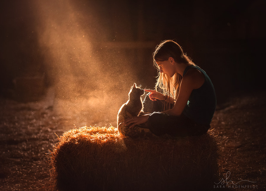 Gentle Touch by Sara Hadenfeldt on 500px.com
