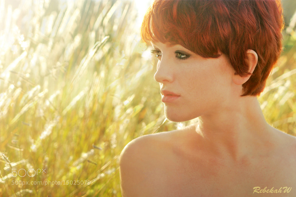Photograph The Golden Hour by Rebekah W on 500px