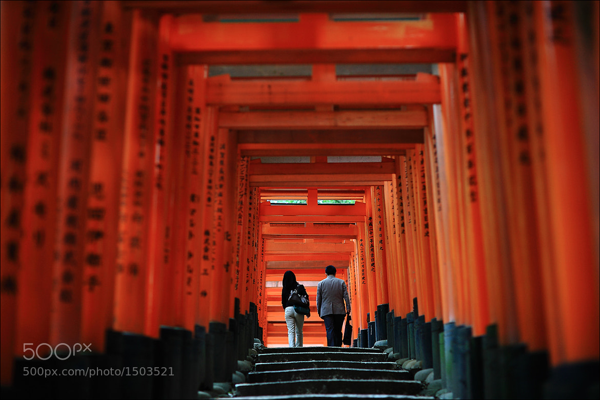 Photograph Orange torii by keehwan Kim on 500px