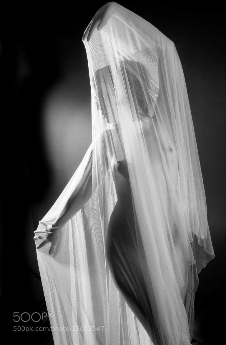 Photograph Shapes  by Csilla Zelko on 500px