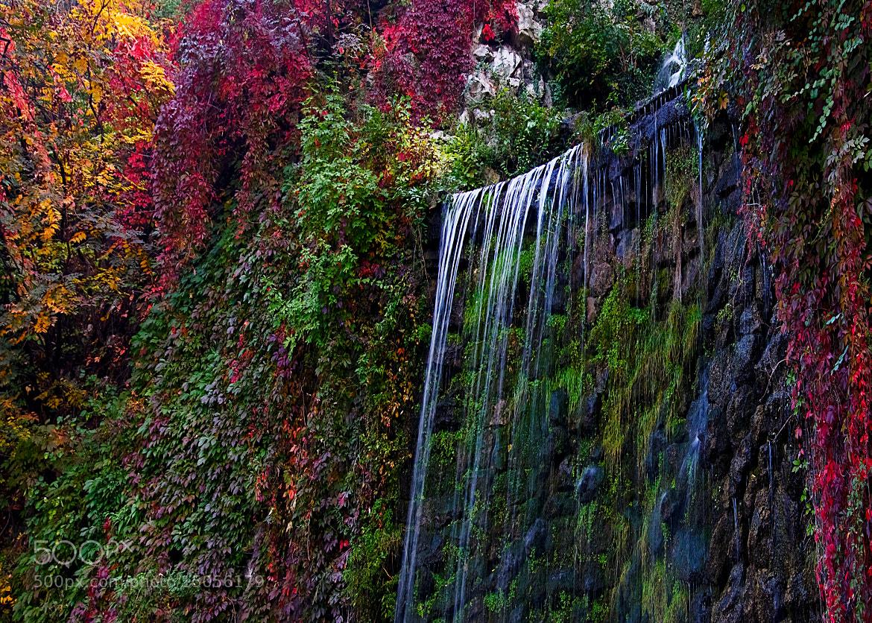 Photograph Nature's Magic Palette by Natasha Pnini on 500px