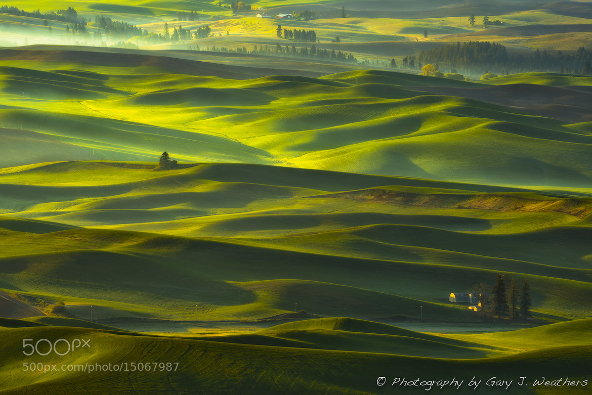 Photograph Undulations of Green by Gary Weathers on 500px