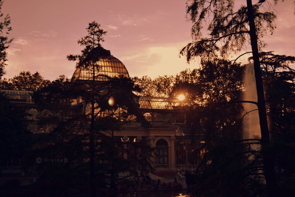 Photograph Crystal Palace II by Orkidea White on 500px