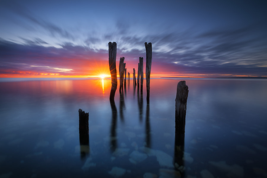 Arise by Dylan Toh  & Marianne Lim on 500px.com