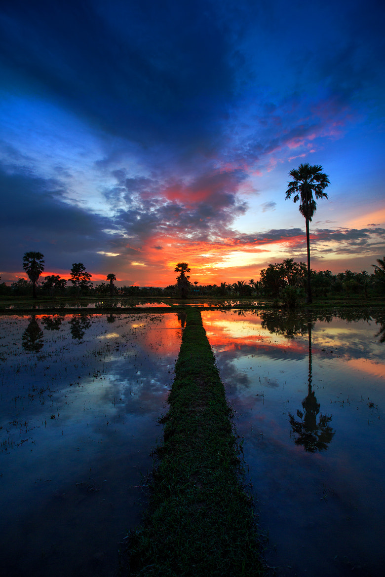 Photograph The reflex Sunset by Arthit Somsakul on 500px