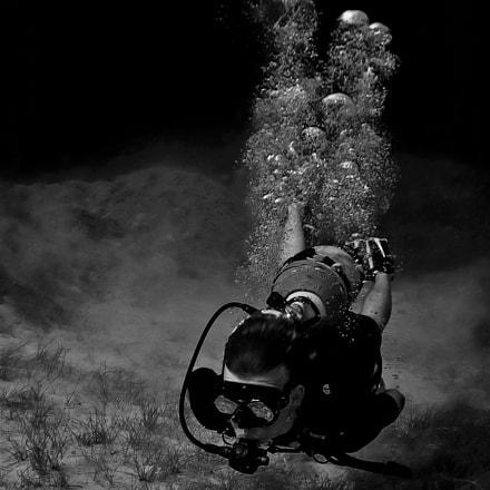 Lucas diving