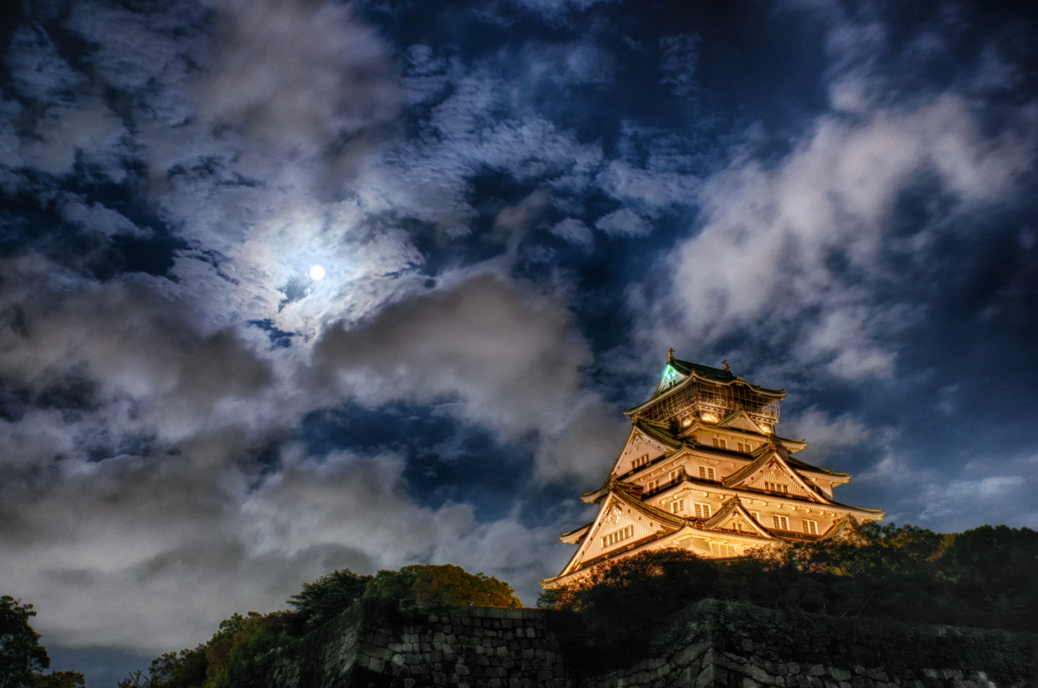Photograph Bark at at the moon by Yoshihiko Wada on 500px