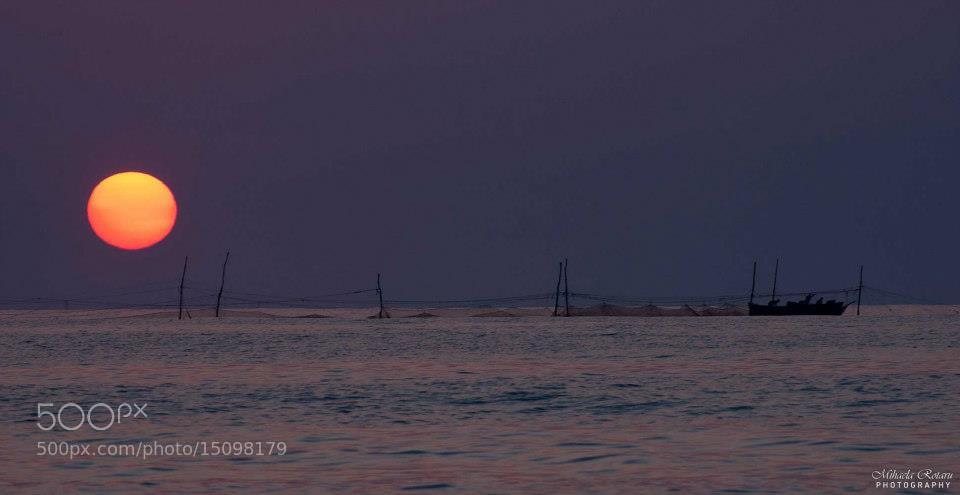 Photograph Sunrise by Mihaela Rotaru on 500px