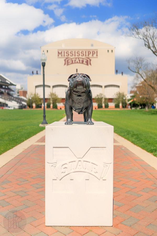 MS State University Campus
