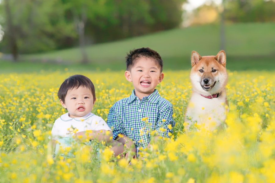 Okamoto Boys