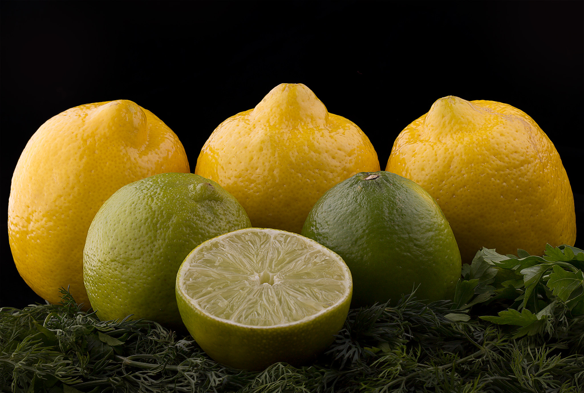 Photograph Lemons and Limes by Vasily Menshov on 500px