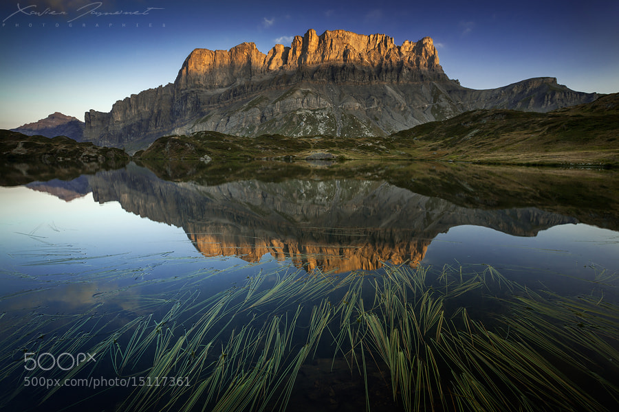 Photograph Origins of symmetry by Xavier Jamonet on 500px