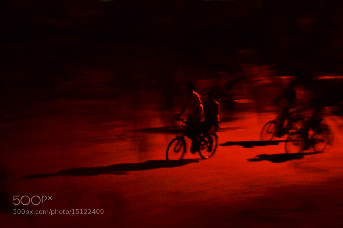 Photograph Nocturnal  Affairs by Suraj Kashyap on 500px