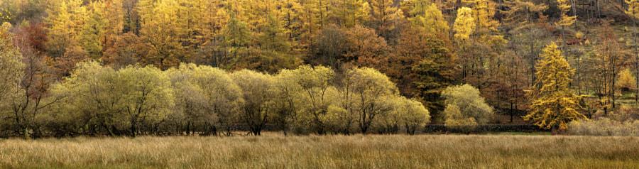 Yew Tree Tarn panorama