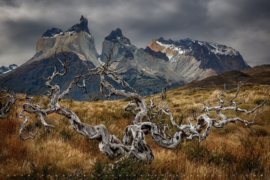 Wood and Stone by Sean Bagshaw on 500px.com