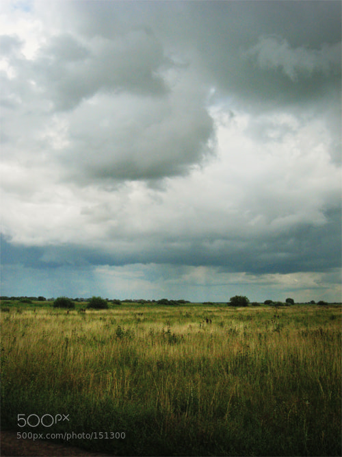Photograph Untitled by Anna Ivanova on 500px