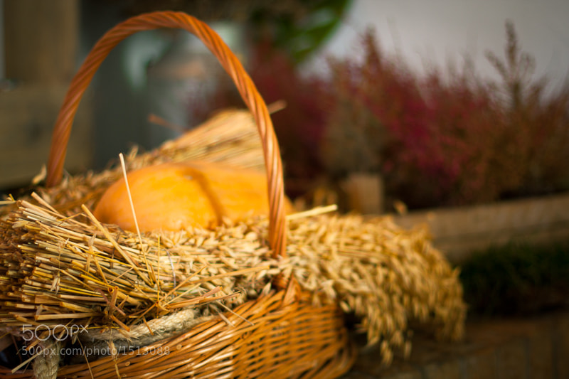 Photograph The Straw Basket by Julia Ryshkina on 500px