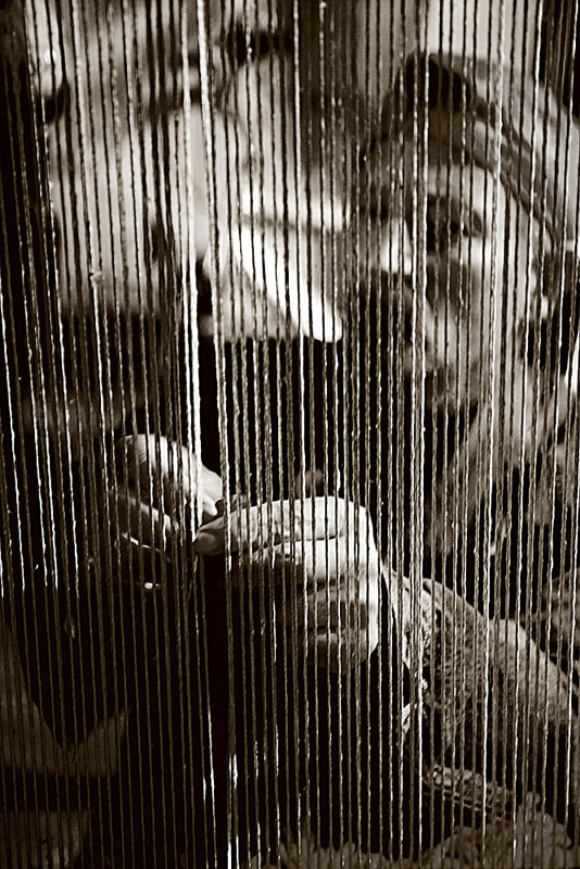 Photograph the weaver by Paola Congia on 500px