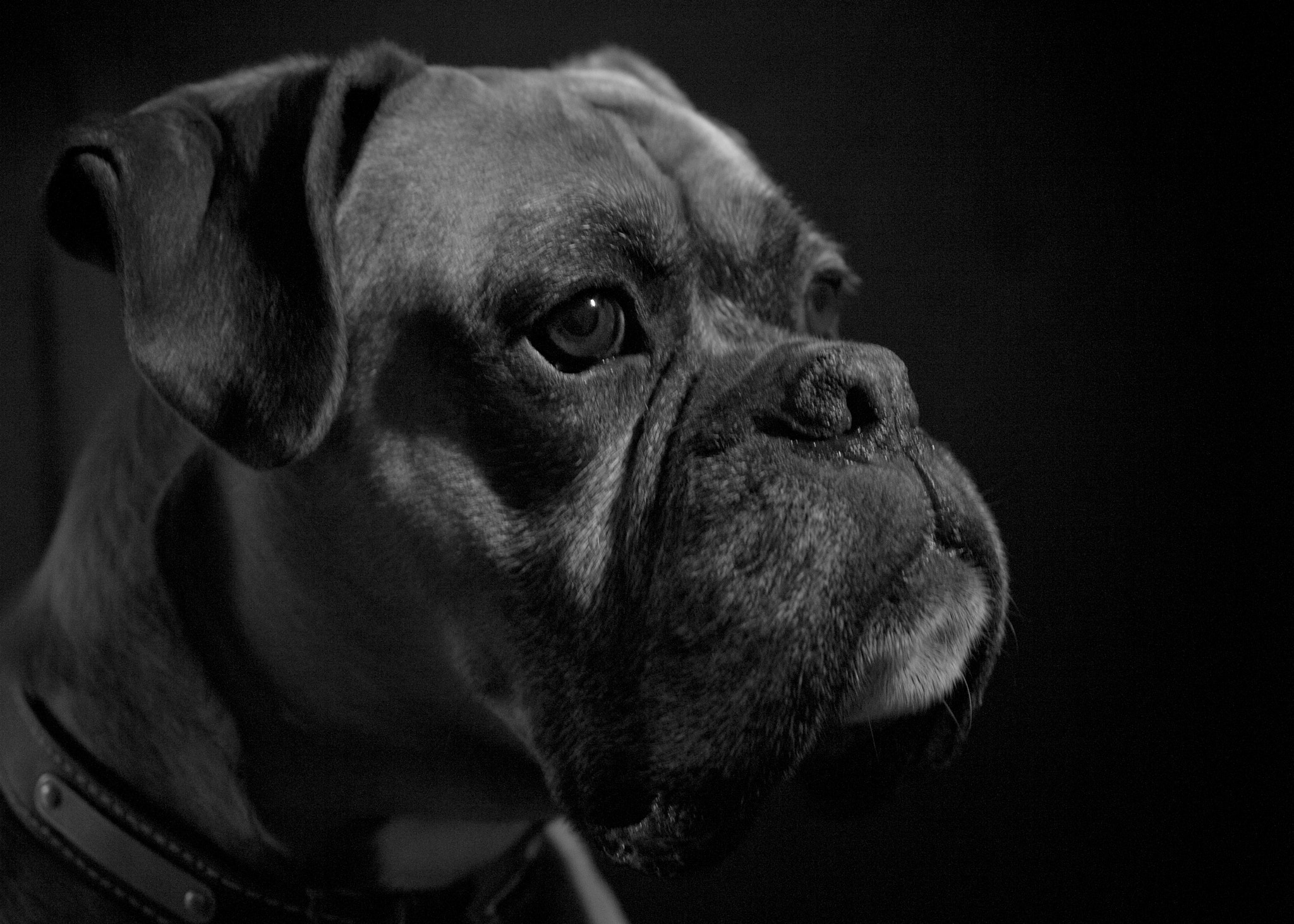 Photograph Dodge by Jo Hopgood on 500px