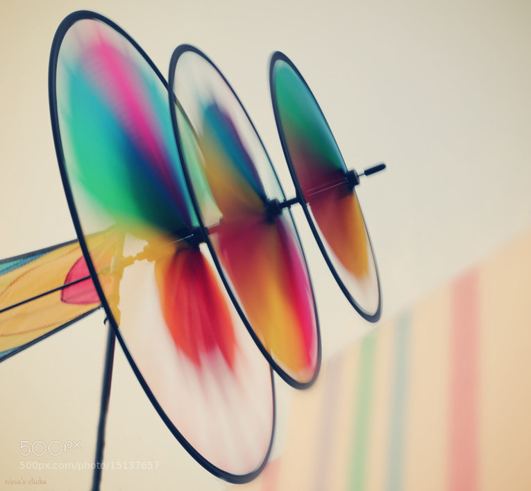 Photograph Spin, spin, spin by Nina's clicks on 500px