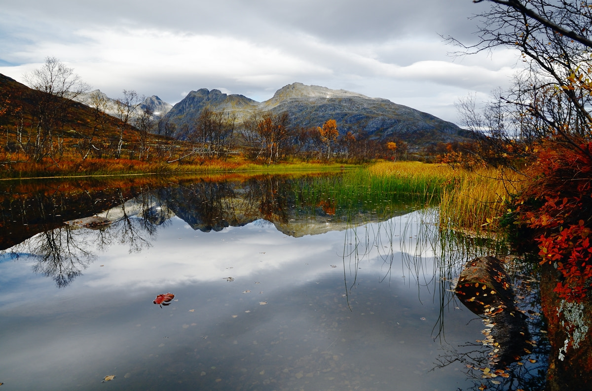 Photograph Autumnal reflections by John Hemmingsen on 500px