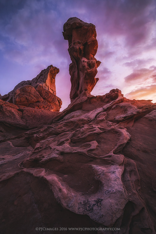 Thumbs Up by Peter Coskun Nature Photography on 500px.com