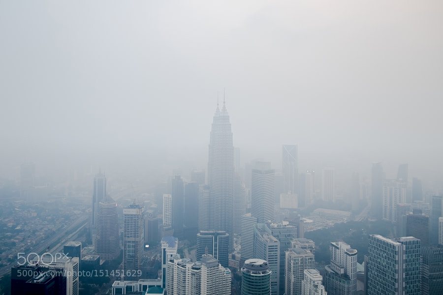 Petronas Towers | Fog