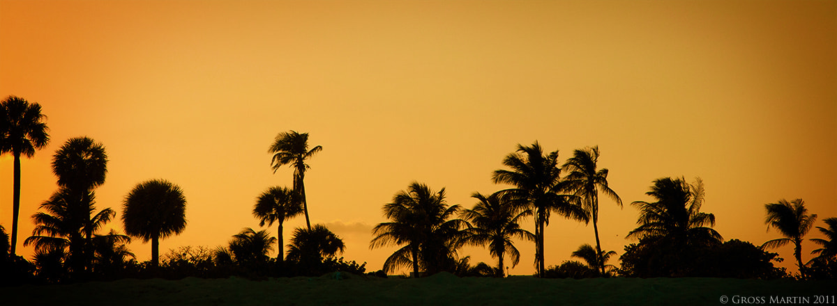 Photograph Miami South Beach by Martin Gross on 500px