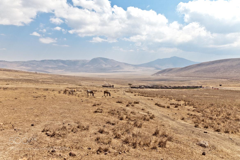 Photograph Seneto's amazing view - Ngorongoro by Kim Mäenpää on 500px