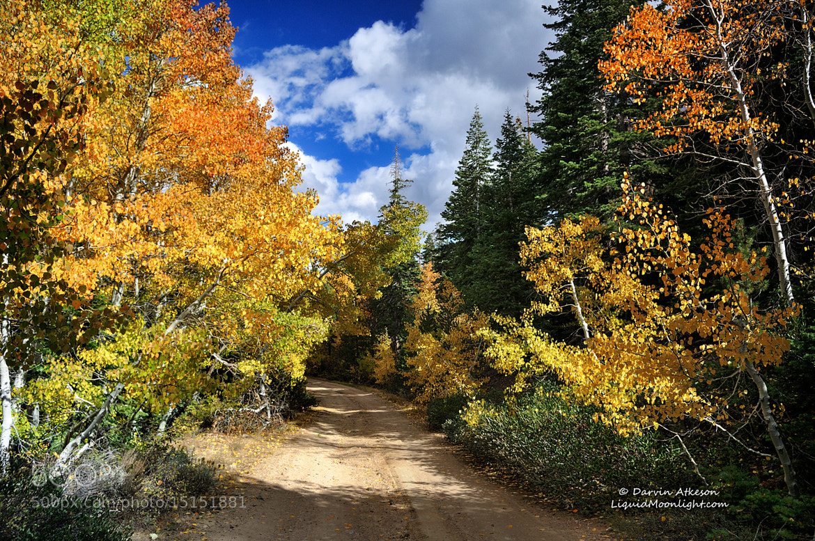 Photograph Take Me Home Country Road  by Darvin Atkeson on 500px