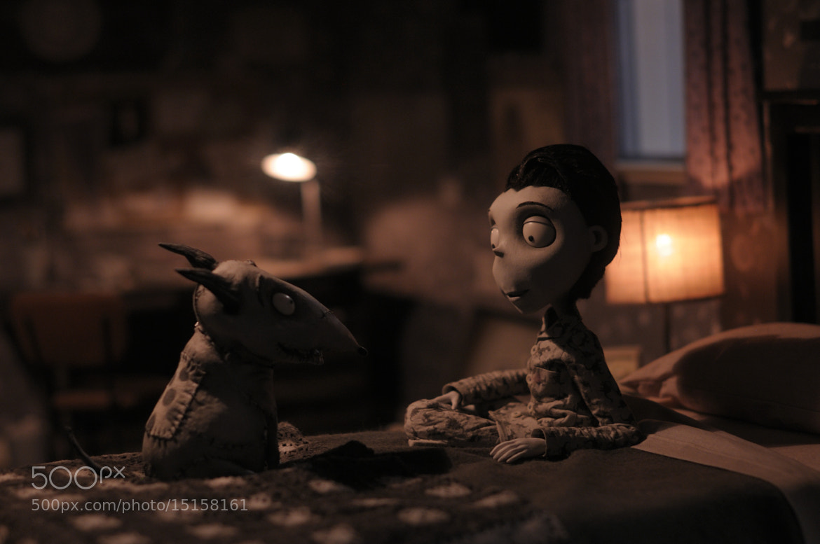 Photograph Frankenweenie by Enrique Catena on 500px