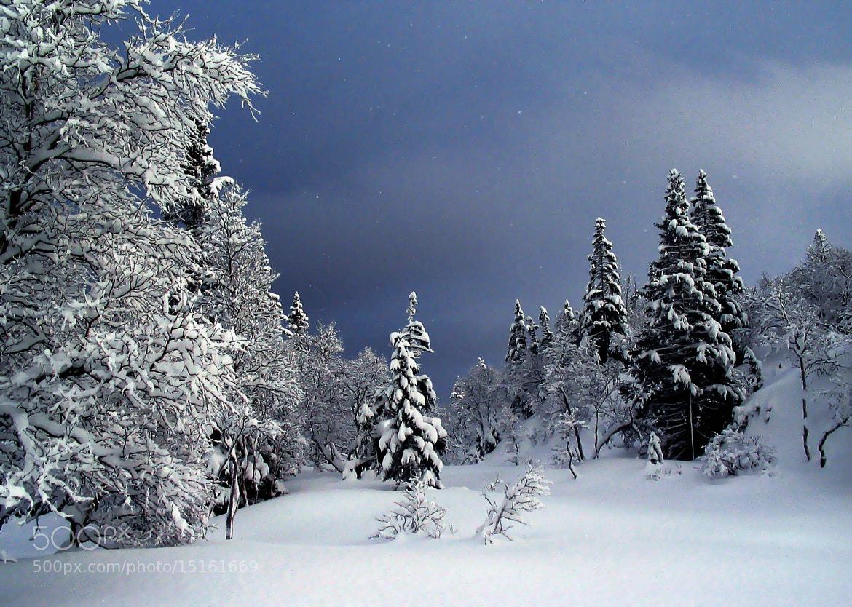 Photograph Wintertime. by Kent Lennart Vassdal on 500px