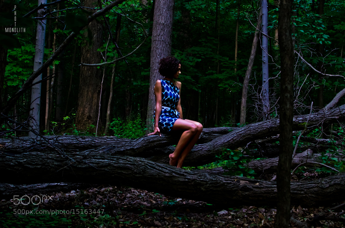 Photograph In The Woods by Monolith Photo on 500px