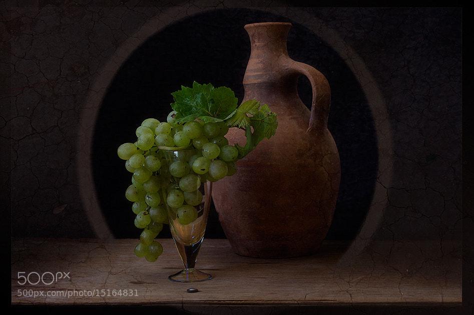 Photograph Studies with grapes by Viktoria Imanova on 500px