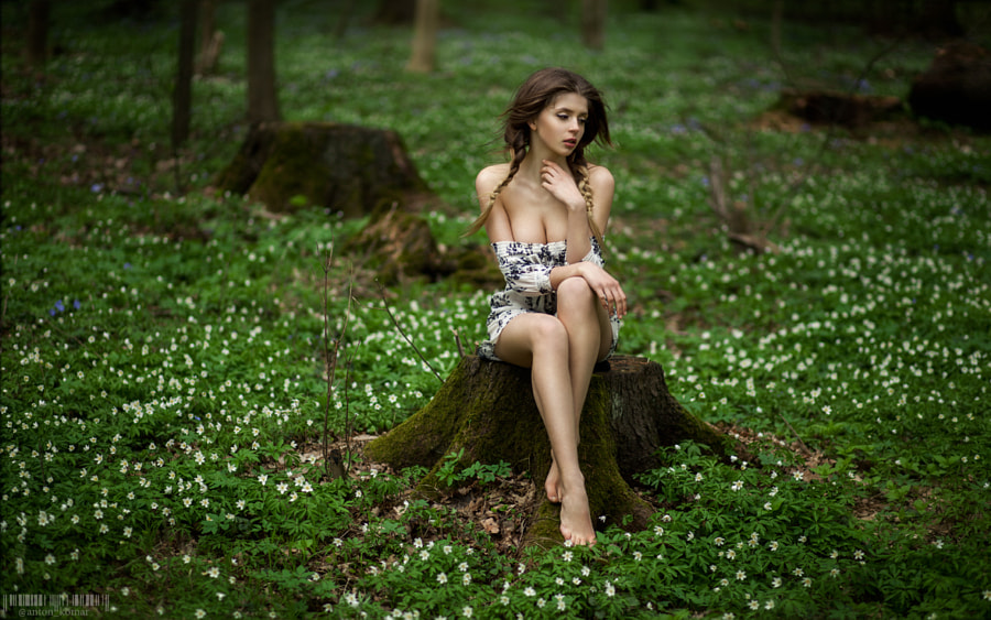 Alexandrina And Her Magical Snowdrops Forest by Anton Komar