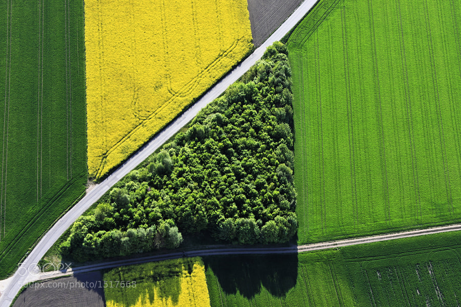 Photograph Green triangle by Klaus Leidorf on 500px