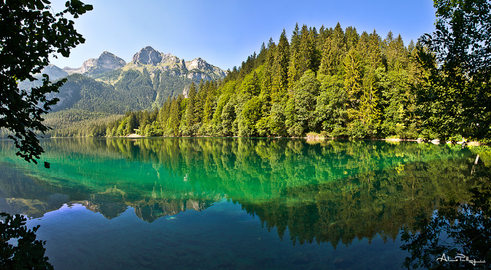 Photograph Summer at Lake Tovel by Alessio Pellegrini on 500px