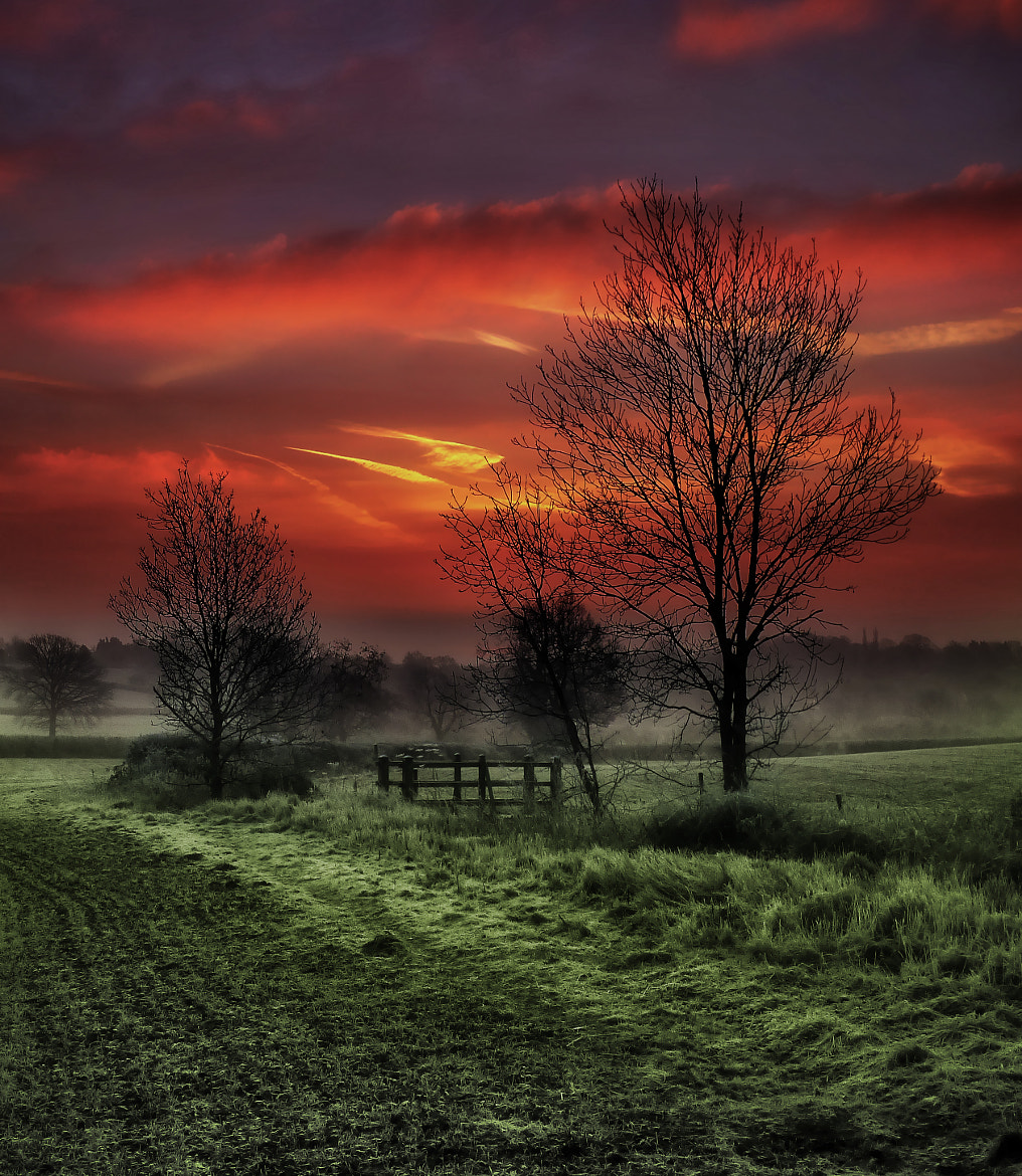 Photograph Fiery Sky by Alan Sheers on 500px