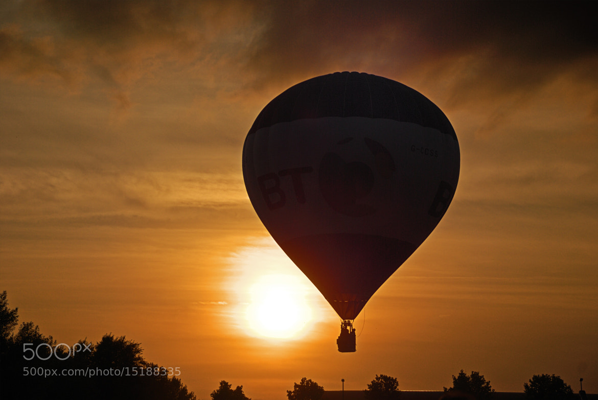 Photograph Fliying at sunset by Alex Novo on 500px