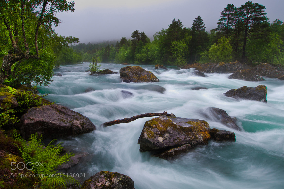 Photograph The river. by Geir Magne  Sætre on 500px