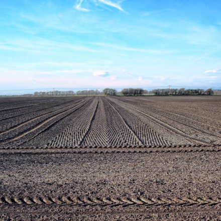 All Ploughed (1), Sony DSC-P120