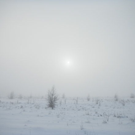 Winter fog, Nikon COOLPIX S1100pj