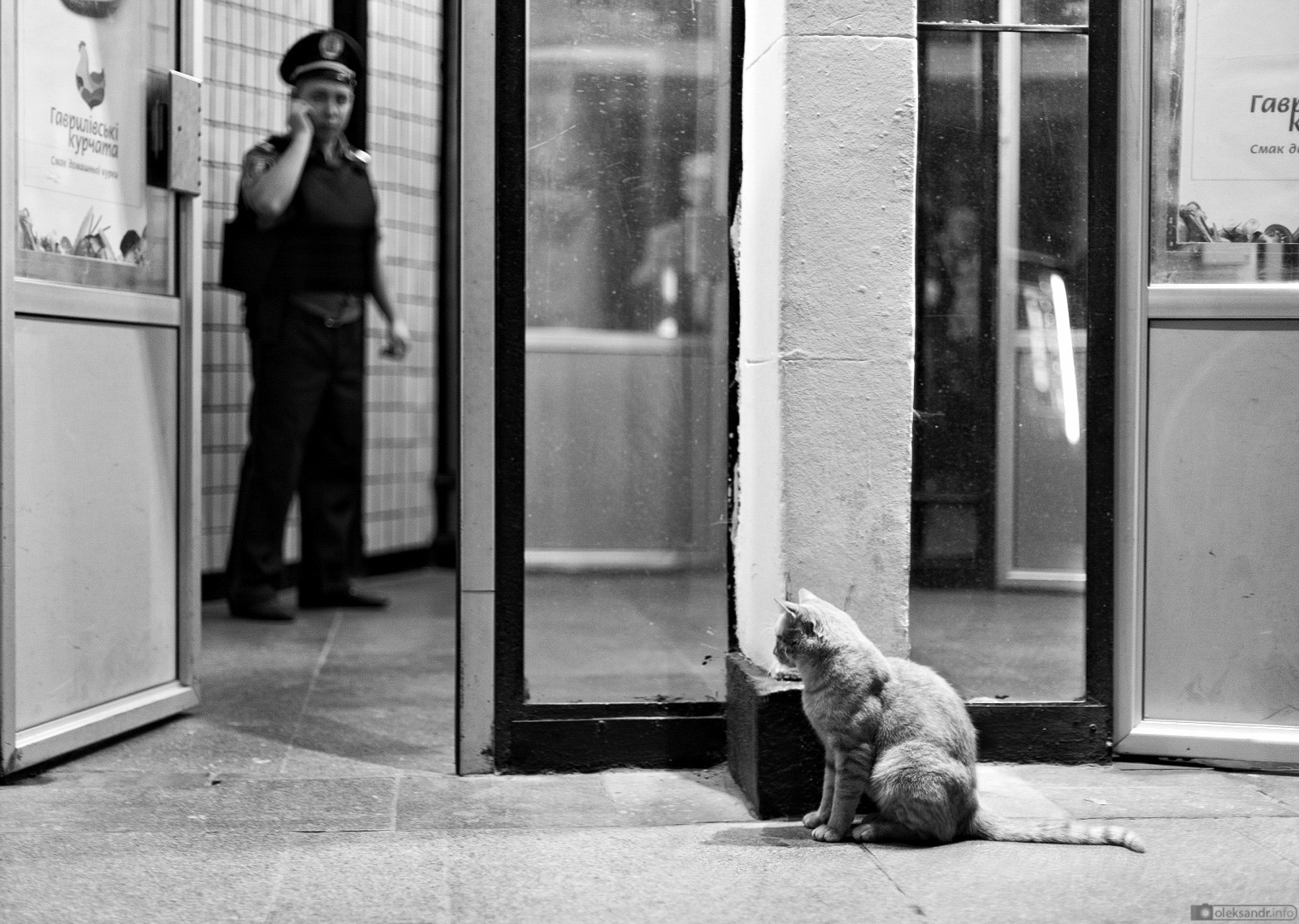 Photograph cat & cop. by Oleksandr Gontar on 500px