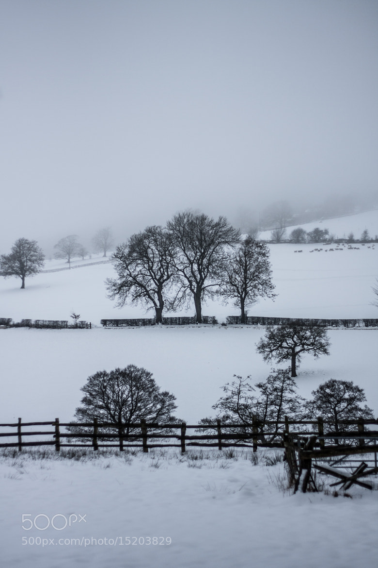 Photograph Cold Sky by Morgan Wiltshire on 500px